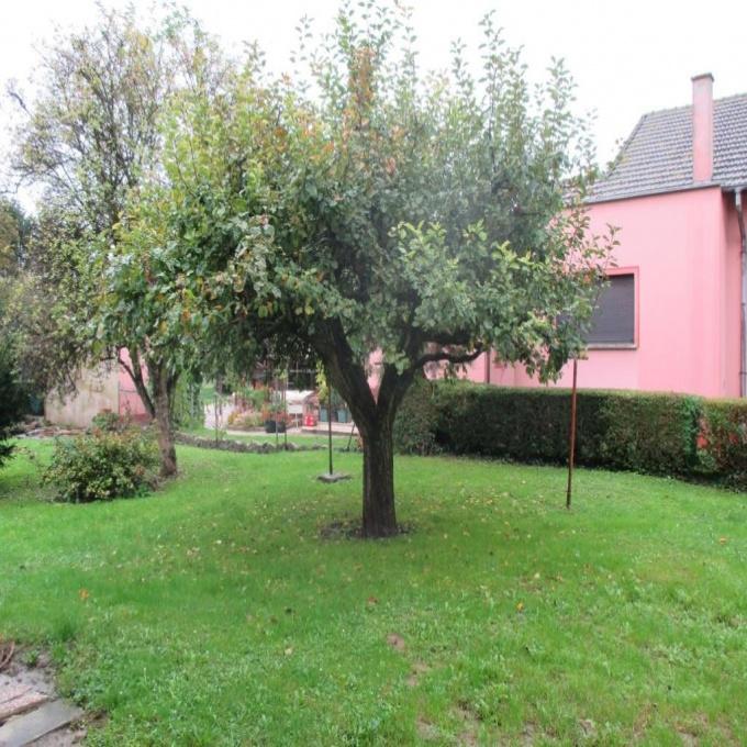 Offres de vente Terrain Wittenheim (68270)